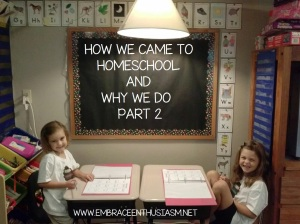 How we Came to Homeschool and Why We Do- Part 2