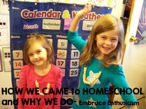 how we came to homeschool and why we do