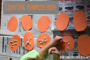 pumkin seed counting