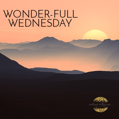 wonderfullwednesday