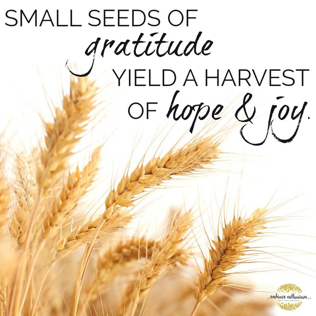 thanksgivingharvest