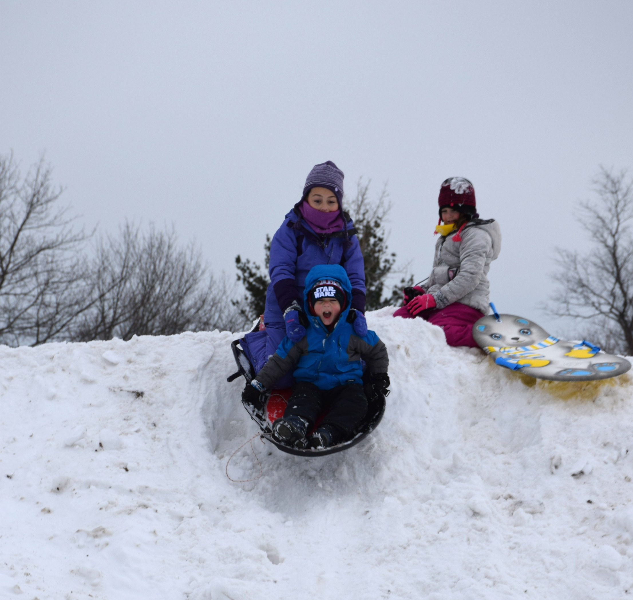 januarysledding